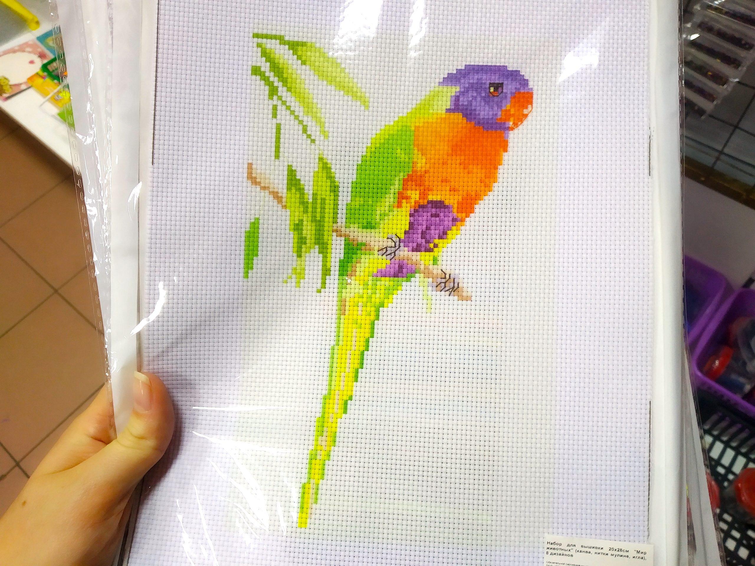 Схема для вышивки попугай