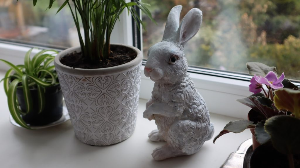 Зачем в Фикс Прайсе раскупили всех садовых фигурок зайчат