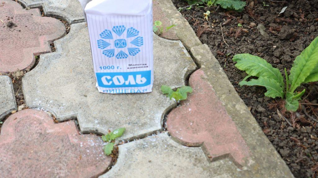 Есть у меня бесплатный эффективный способ борьбы с травой на тротуарной плитке. Пользуюсь им много лет