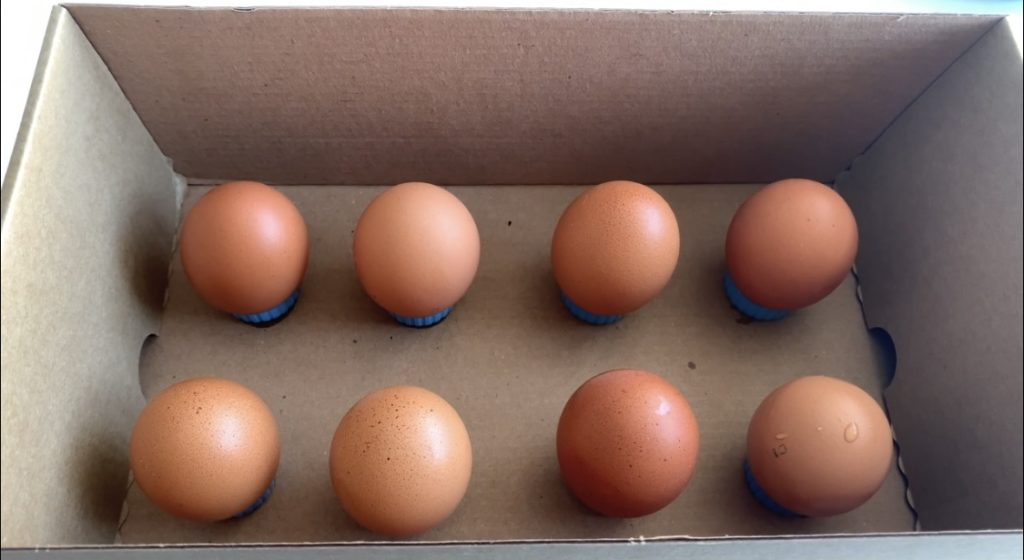 Мои хитрости с куриными яйцами